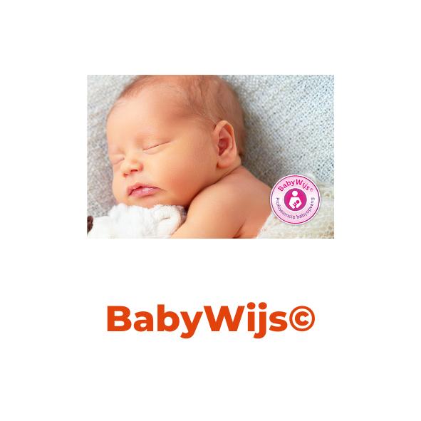 BabyWijs Professionele babyopvang